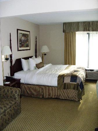 Wingate by Wyndham Alpharetta : King bed