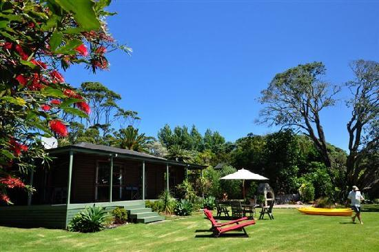 Sanctuary in the Cove: Garden and Pohutakawa trees