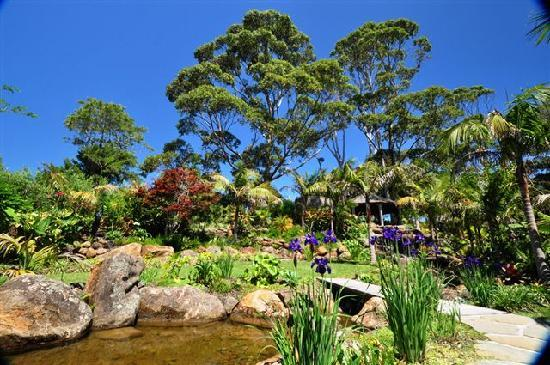 Sanctuary in the Cove : Water Gardens