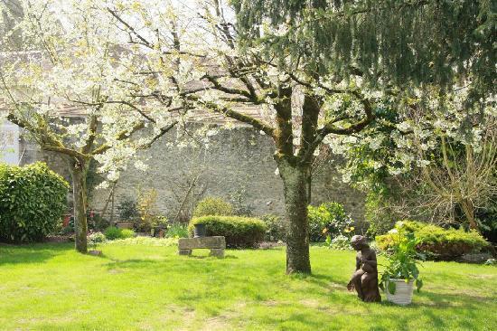 Le Clos de Provins: Le jardin
