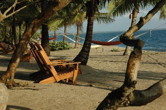 Hamanasi Adventure and Dive Resort: the beach area