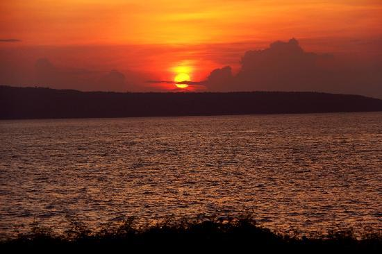 The Sunset: Sunset