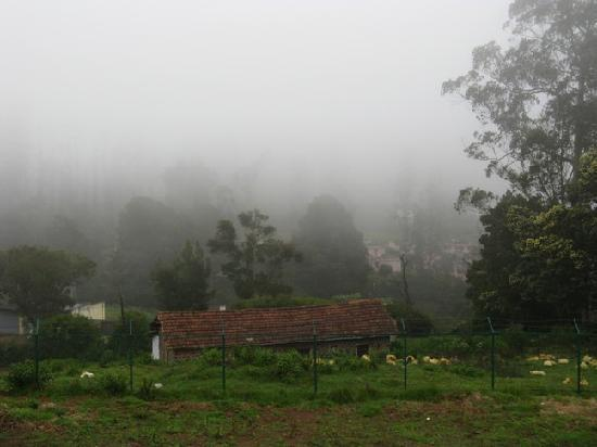 Deccan Park Ooty: View from our room balcony