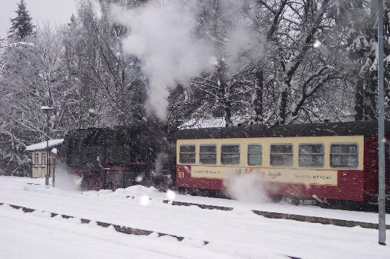 Wernigerode, Germany: Steaming on the Harz Mountain Railway