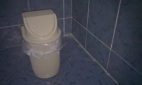 Om Kolthoom Hotel & Tower: Cheap plastic bin and appalling tile finishing