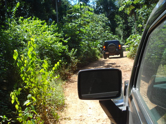 Hummer Jungle Tours: H3 in the Jungle