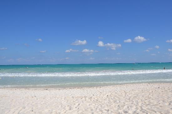 Catalonia Playa Maroma: PLAYA PARADISIACA
