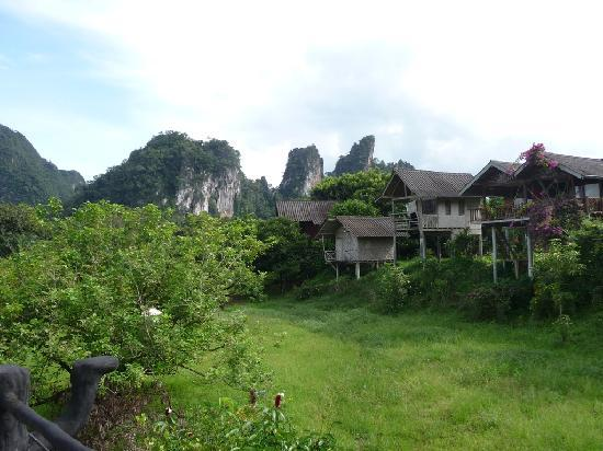 Khao Sok Smiley Bungalow : smiely