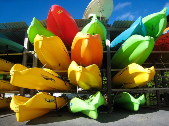Virgin Islands Ecotours: The kayaks