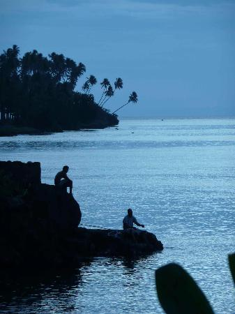 Paradise Taveuni: Typical lovely scene from the resort