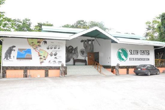 Sloth Sanctuary of Costa Rica (Aviarios del Caribe): The Sloth Sanctuary.