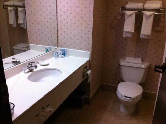 Hampton Inn Parkersburg: Bathroom