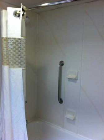 Hampton Inn Parkersburg: Shower with bowed rod for more room