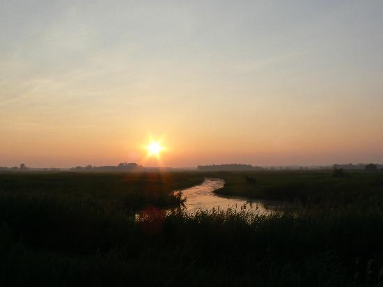 Long Point Provincial Campground: Sunset over the wetlands