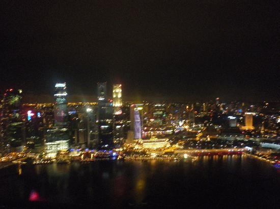 Veiw of Singapore city from the Infity Pool at the Skypark
