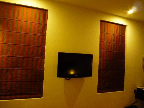 Ebony Boutique Hotel : Flat screen TV with cable