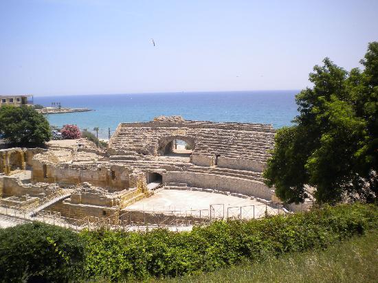 Tarragona, Spanien: The amphitheatre