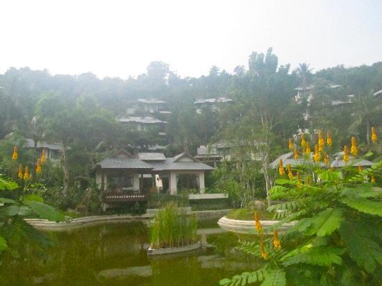 Salad Buri Resort & Spa: the hotel area