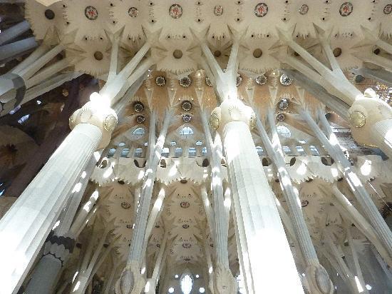 聖堂内覧#2 石柱の森