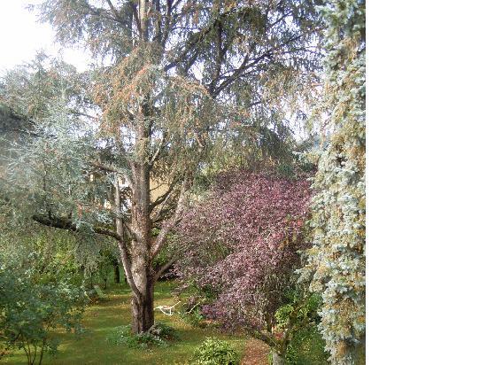 Le Jardin Sarlat: Part of the garden