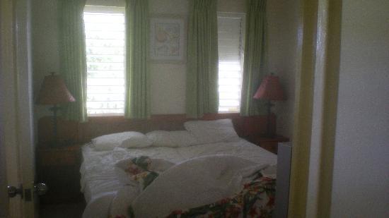 Tropical Winds Apartment Hotel: camera