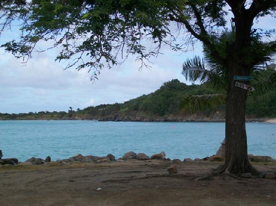 St Martin / St Maarten: Friars Bay