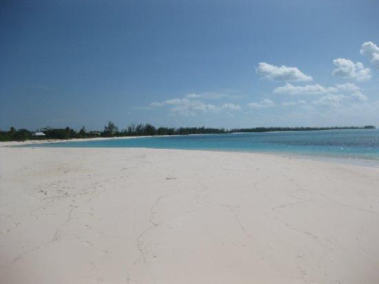 Shannas Cove Resort: Beach 4