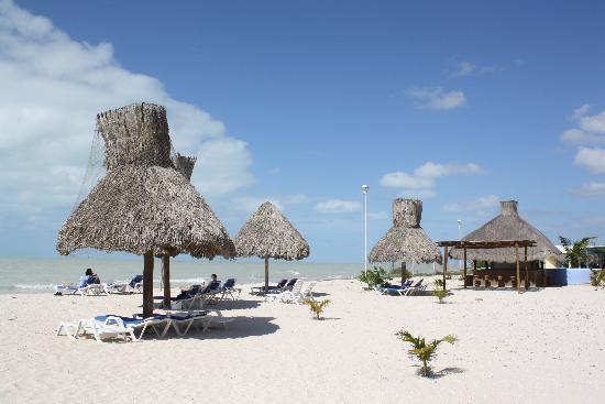 Celestun, Mexico: Hotel Manglares Strand