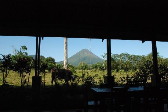 Hotel Gran Arenal: View of the volcano from the breakfast area