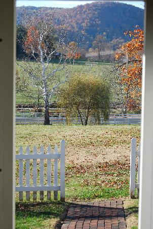 Middleton Inn: View from the cottage.