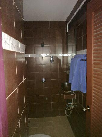 Hansaah Guest House: salle de bain privee / en suite bathroom