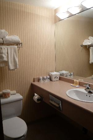 Days Inn - Vancouver Airport: Days Inn bathroom