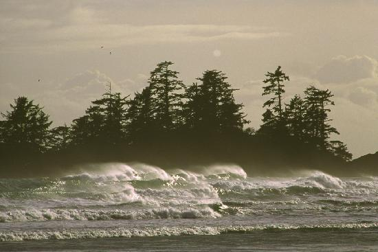 Tofino, Kanada: Surf at Chesterman Beach