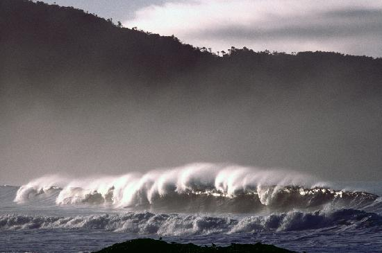 Tofino, Canada: Winter waves