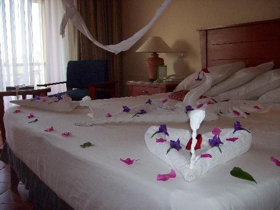décoration de la chambre, pour l\'anniversaire - Bild von Magic Tulip ...