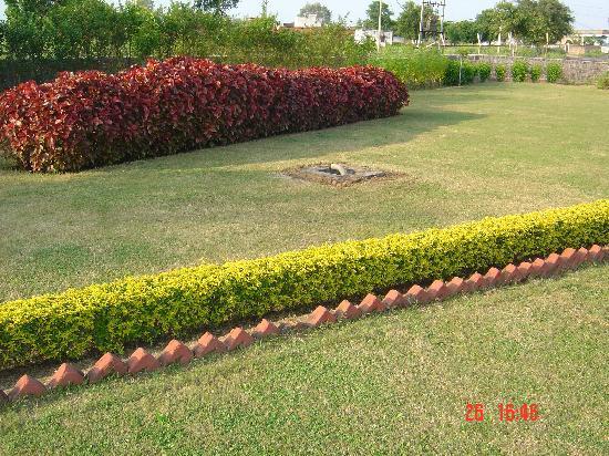 Hotel Plaza Khajuraho: garden