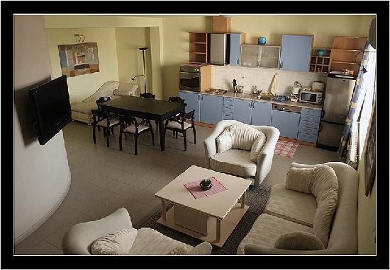 Sofia Inn Residence: 2 bedroom apartment's living room