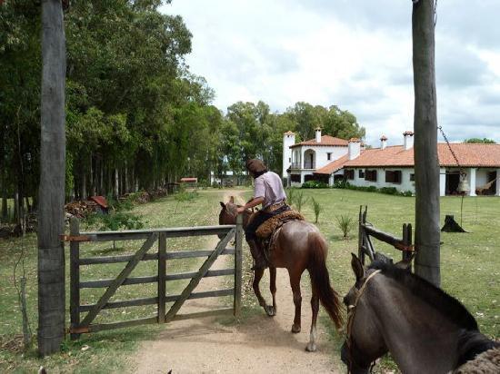Estancia Pinos de la Quebrada : Horseriding with our gaucho