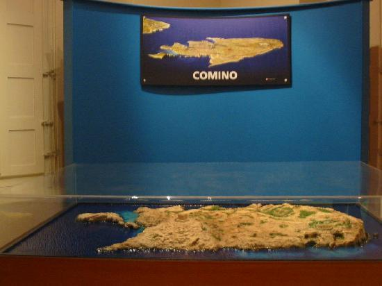 National Museum of Natural History : Reconstitution de Fungus rock (Gozo)