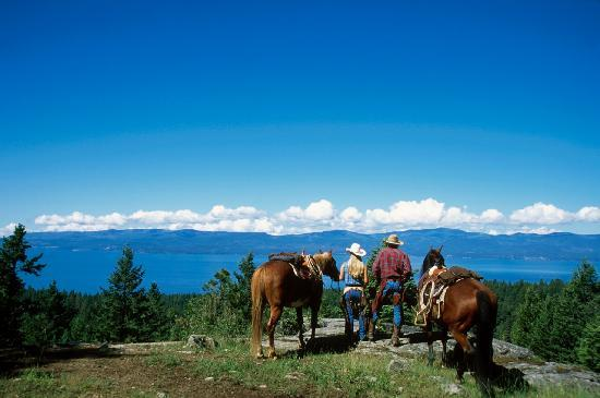 Averill's Flathead Lake Lodge 사진