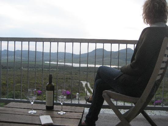 Farm 215 Nature Retreat & Fynbos Reserve: Wine with view