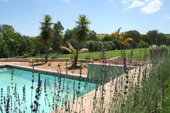 Lady Loch Guesthouse: Swimming Pool