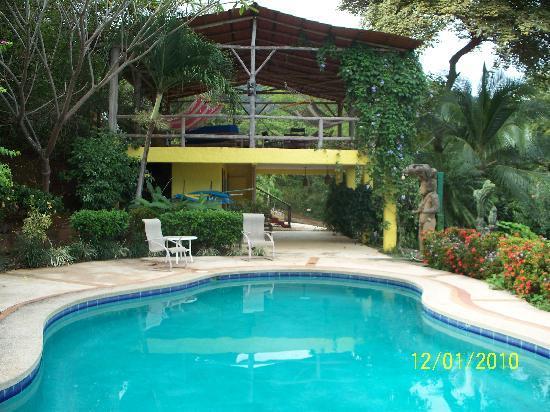 Rancho Armadillo Estate: Rancho Armadillo Pool