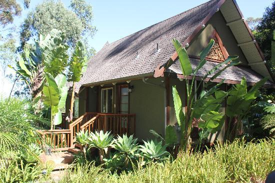 Aloha Cottage: The Front