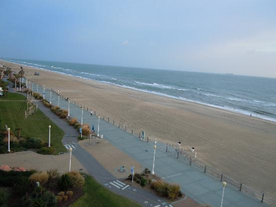 Forex virginia beach va