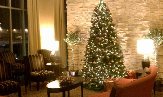 SpringHill Suites Minneapolis-St. Paul Airport/Mall of America: Tree in the lobby.