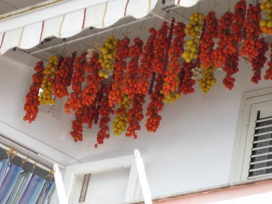 Villa Flavio Gioia: Hanging Tomatoes!