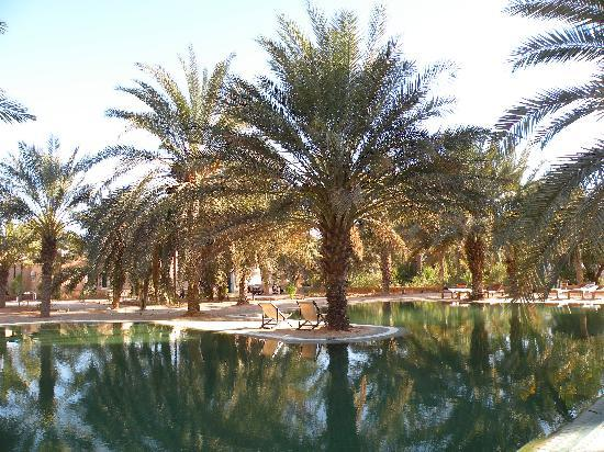 Kebili, Τυνησία: This is an oasis!