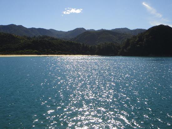 Aquapackers : the view