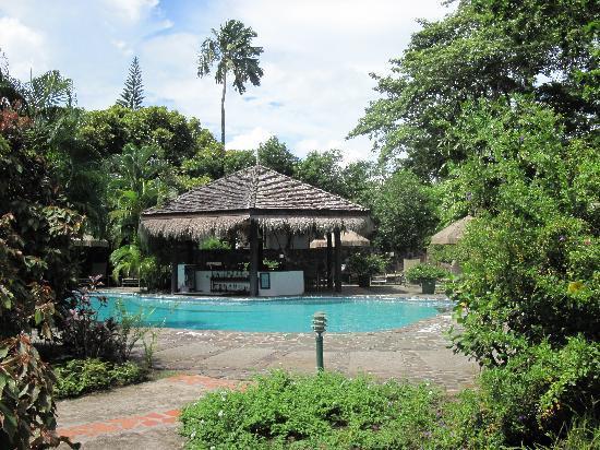 East Winds Inn: tropical garden